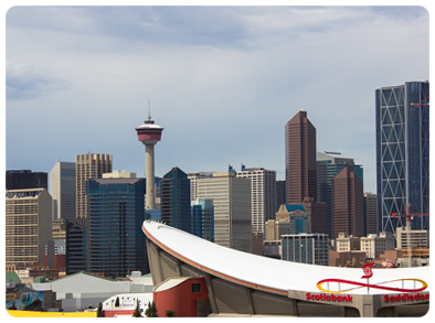 Calgary: A New Chapter