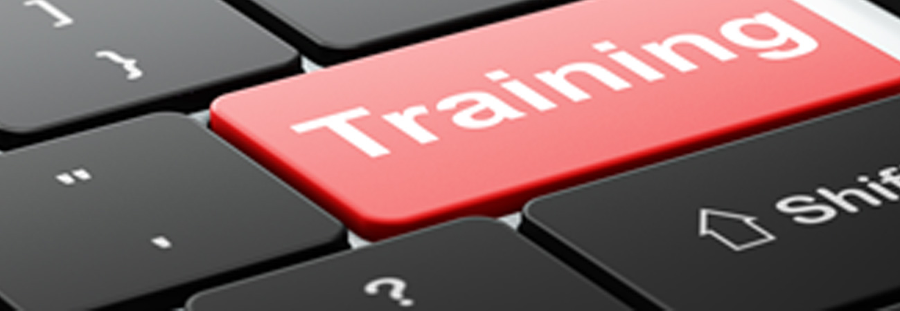 Computer Training for Employment